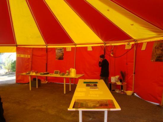 Ateliers entretien maison à St Même Les Carrières (16)